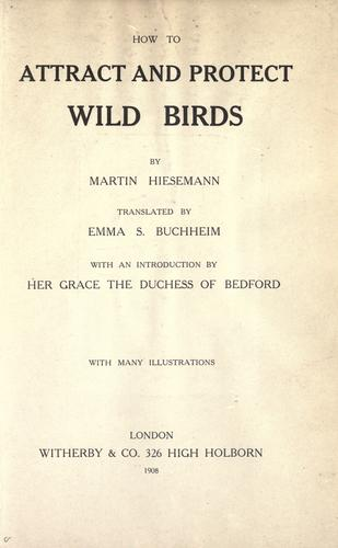 Download How to attract and protect wild birds