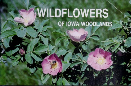 Download Wildflowers of Iowa woodlands