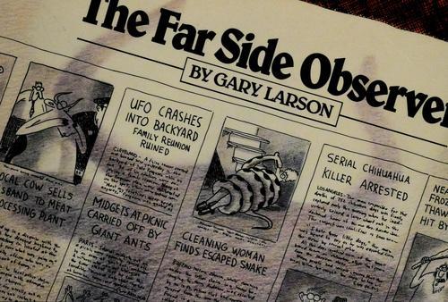The Far Side ® Observer