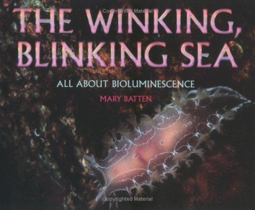 Download Winking, Blinking Sea