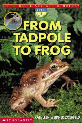 Download From tadpole to frog