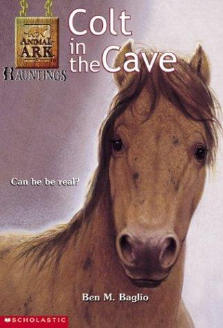 Colt in the Cave (Animal Ark Hauntings, #4)