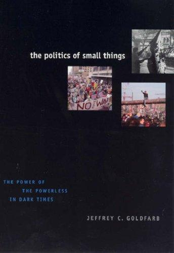 Download The Politics of Small Things