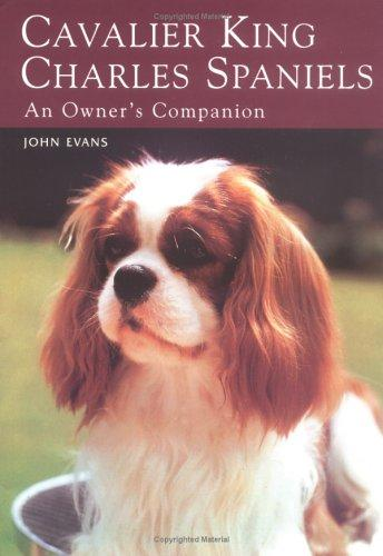 Download Cavalier King Charles Spaniels