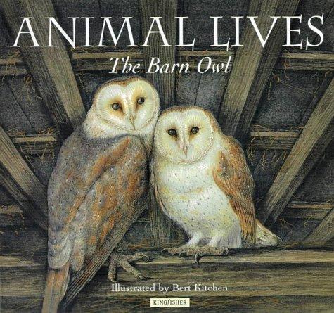 Barn Owl (Animal Lives)