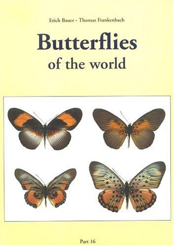 Butterflies Of The World (Nymphalidae VII, Pseudacraea) by