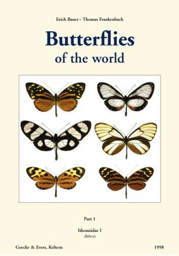 Butterflies of the World by Gerardo Lamas
