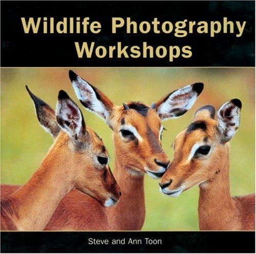 Wildlife photography workshops by Ann Toon