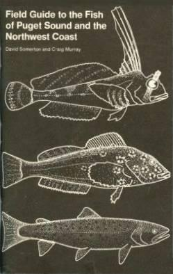 Field guide to the fish of Puget Sound and the Northwest coast by David Somerton
